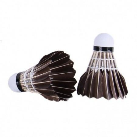 REIZ X6 Feather Shuttlecocks Professional Badminton Accessory 12PCS