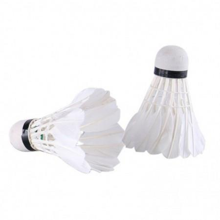 REIZ M10 Feather Shuttlecocks Professional Badminton Accessory 12PCS